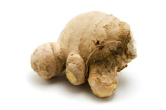 Ginger Stock Photos