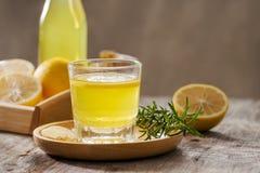 Ginger Ale - boisson organique faite maison de soude de citron et de gingembre, l'espace de copie photographie stock libre de droits