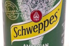 Ginger Ale Can em detalhe Fotografia de Stock Royalty Free