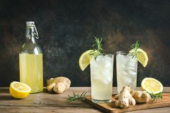 Ginger Ale oder Kombucha lizenzfreie stockbilder