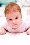 Ginger baby girl Stock Photo