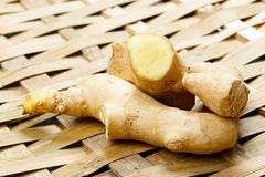 Ginger on bamboo Royalty Free Stock Images
