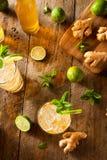 Ginger Beer d'or régénérateur images libres de droits