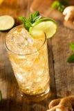 Ginger Beer dorato di rinfresco immagini stock
