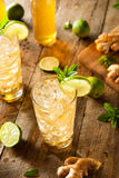 Ginger Beer dorato di rinfresco immagine stock libera da diritti