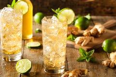 Ginger Beer dourado de refrescamento imagens de stock