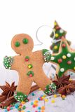 Ginger biscuit Royalty Free Stock Images