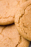 Ginger biscuits. Ginger nut biscuits close up Royalty Free Stock Image