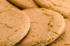 Ginger biscuits. Ginger nut biscuits close up Royalty Free Stock Images