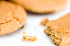 Ginger biscuits. Ginger nut biscuits on a white background Stock Photography