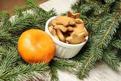 Ginger biscuits and mandarin. Branch was eaten. NewYear. Ginger biscuits and mandarin. Branch was eaten. New Year. Orange mandarine Stock Image