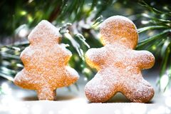 Ginger biscuits and spruce branches. Snow-covered kartika, Chris stock photo