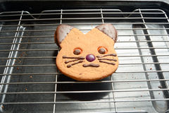 Ginger bread cat biscuit. On wire rack Royalty Free Stock Photos