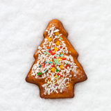 Ginger bread Christmas cookie Stock Image