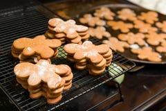 Ginger Bread Cookies Foto de archivo libre de regalías