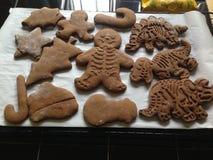 Ginger Bread Cookies arkivfoto