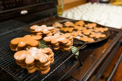 Ginger Bread Cookies Stock Image