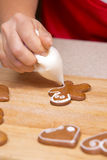 Ginger bread cookies Royalty Free Stock Images