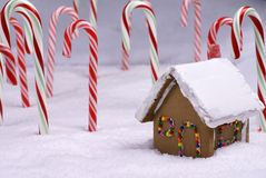Ginger Bread Cottage In Candy Cane Forest Royalty Free Stock Photos