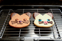 Ginger bread and shortbread cat biscuits. On wire rack Stock Image
