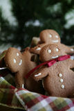 Ginger bread waiting for santa claus royalty free stock photography
