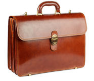 Ginger Briefcase immagine stock