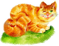 Ginger cat. Illustration of cute ginger cat on grass Royalty Free Stock Photography