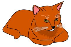 Ginger cat. Illustration of a ginger cat Royalty Free Stock Photography