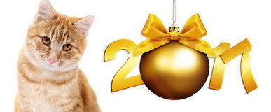 Ginger cat and christmas ball with gold satin ribbon bow. Ginger cat and golden christmas ball with gold satin ribbon bow and 2017 text Royalty Free Stock Image