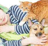Ginger cat and dog Stock Photography