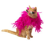 Ginger cat with feather boa (and shadow). Ginger cat with feather bower and sun glasses(and shadow) on white backround Royalty Free Stock Photo