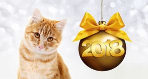 Ginger cat and golden christmas ball with ribbon bow. And gold 2018 text Stock Photos