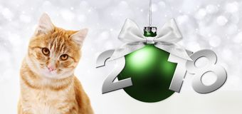 Ginger cat and green christmas ball with ribbon bow Royalty Free Stock Photography