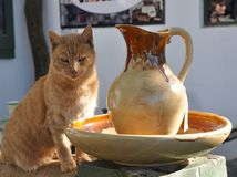 Ginger Cat & Jug (2). A ginger cat sitting outside an art shop in a village in the Eastern Cape, South Africa. The color of the cat and the jug complimented each Stock Photography