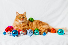 Ginger cat lies on bed among christmas decorations Royalty Free Stock Image