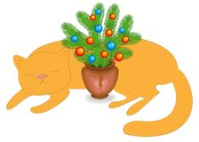 Ginger cat is sleeping. Near the domestic animal New Year s composition, fir branches in clay goshka. Christmas tree decorated vector illustration