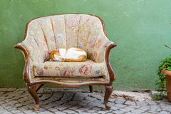 Ginger Cat Sleeping on Sofa Chair in Front of a House royalty free stock photo