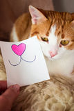 Ginger cat with a smile sticker Stock Photography