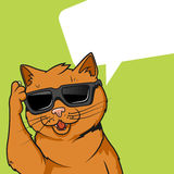 Ginger cat in sunglasses vector illustration Royalty Free Stock Images