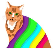 Ginger cat under a colourful blanket Royalty Free Stock Photography