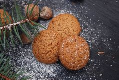 Ginger Christmas cookies on a black board with sugar powder and fir branch. Cooking recipie. Ginger Christmas cookies on a black board stock photography