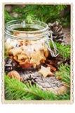 Ginger Christmas Cookies Stars in Kruik Retro Kader Stock Foto
