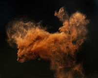 Ginger cloud of a magic dust Royalty Free Stock Photos