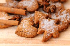 Ginger cookies. With cinnamon and anise Stock Image