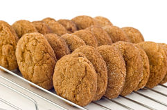 Ginger cookies Stock Photo