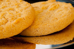 Ginger Cookies Stock Image