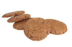 Ginger Cookies Fotografie Stock
