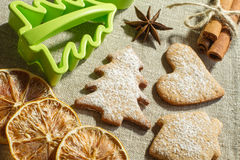 Ginger cookies and fir-tree form royalty free stock photography