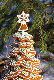 Ginger cookies in the shape of a christmas tree under the spruce Royalty Free Stock Photography
