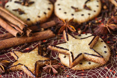 Ginger cookies and spices: cinnamon, cloves, anise Royalty Free Stock Images